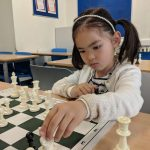 Total Chess Beginner